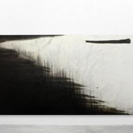Hugo Fontela. Palm I, 2010