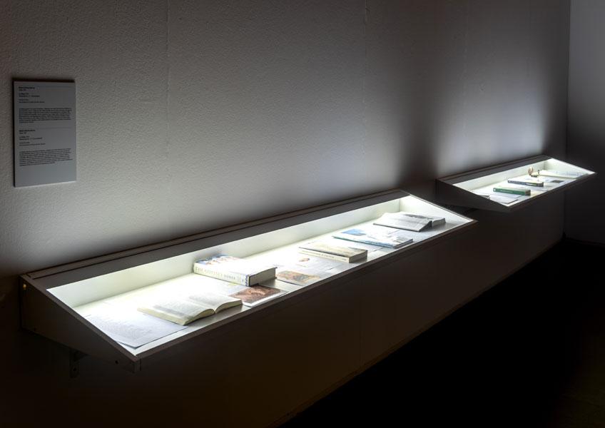 Bárbara Sánchez Barroso. La Odisea en Els marges. Produccions afectives, polítiques i estètiques des de fins i fora d'un territori, Centre d'Art La Panera. Foto: Jordi V. Pou
