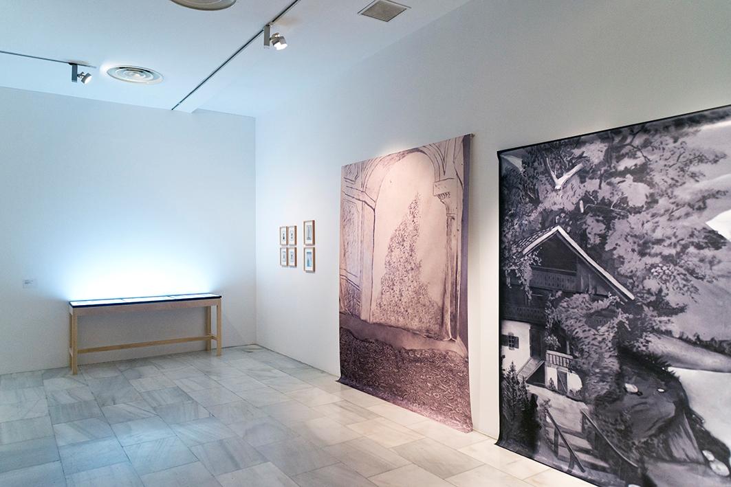 Andrés Pachón. The Fletcher Series. Vista de la instalación. Fotografía de Arantxa Boyero
