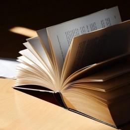 Bibliotecas digitales: maneras de acercarse al infinito