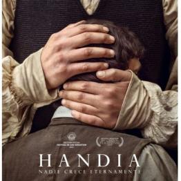 Handia, película sobre el gigante de Altzo, Miguel Joaquin Eleizegui