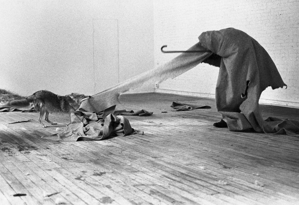 Joseph Beuys. Coyote: I like America and America likes me, 1974