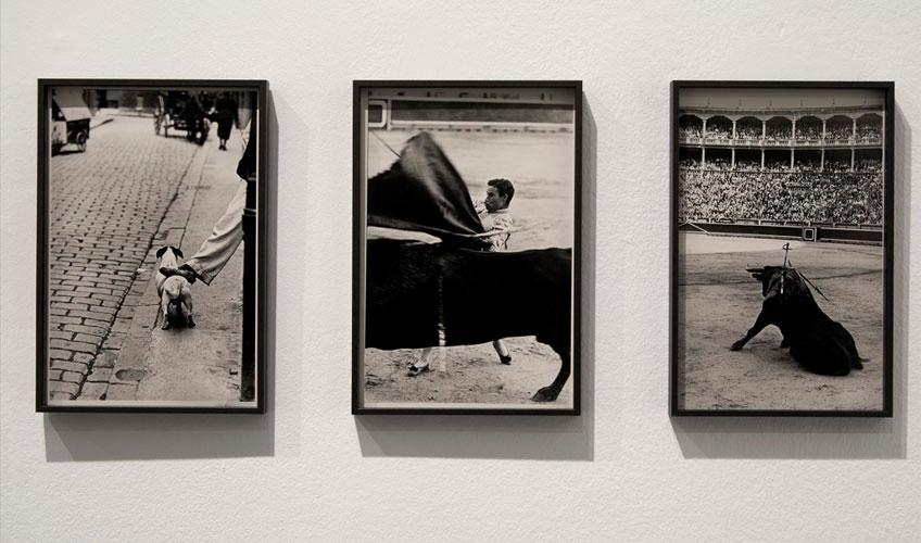 """Vista de sala de la exposición """"Una aproximación a Afal. Donación Autric-Tamayo"""""""