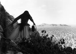 Graciela Iturbide. Mujer Ángel, Desierto de Sonora, 1979