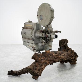 Jacobo Castellano. Sin título (Proyector con olivo), 2017-2018. Cortesía del artista