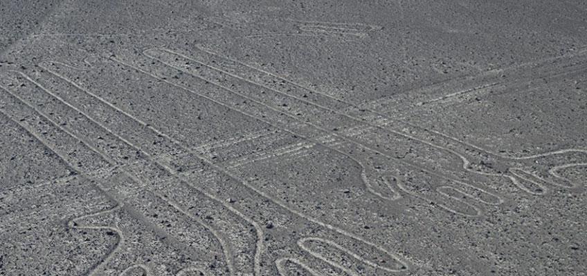 Geoglifo de Nazca (Perro o camélido)