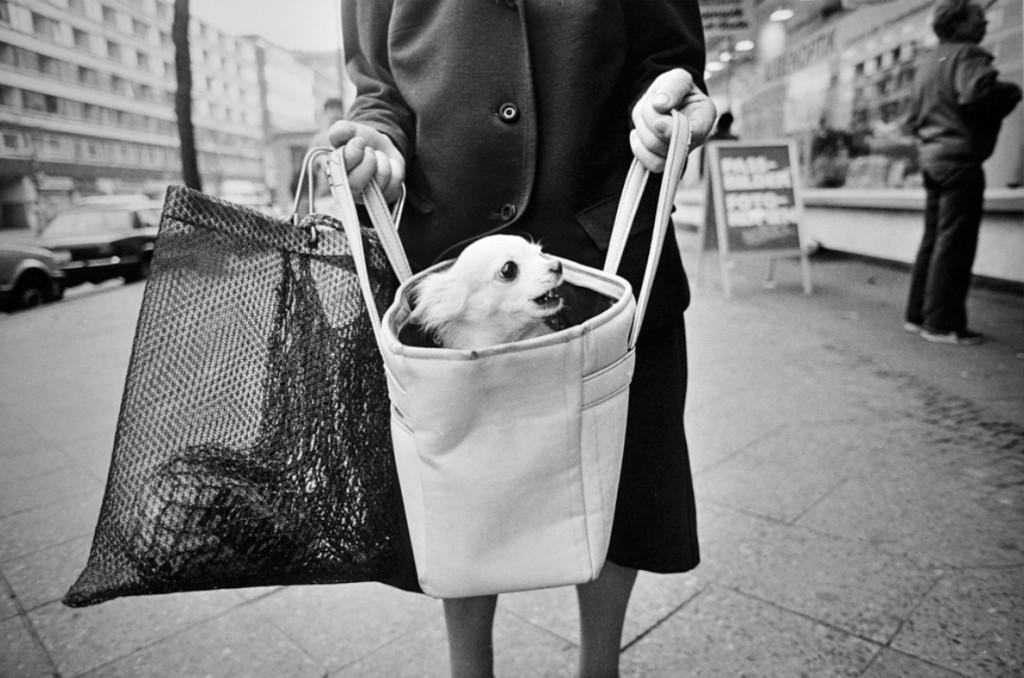 David Hornback. STREET PHOTOGRAPHY
