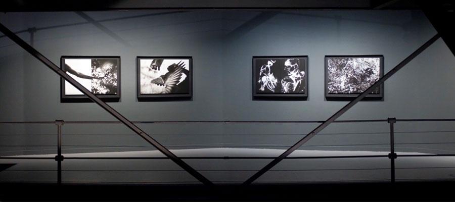"""David Jiménez. """"Universos"""" en la Sala Canal de Isabel II"""