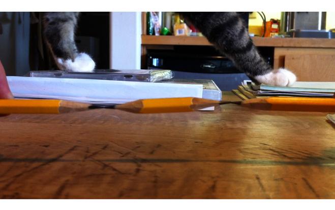 Bruce Nauman. Pencil Lift/Mr.Rogers, 2013