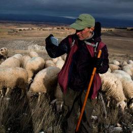 Pegado a tierra: la España interior según Navia