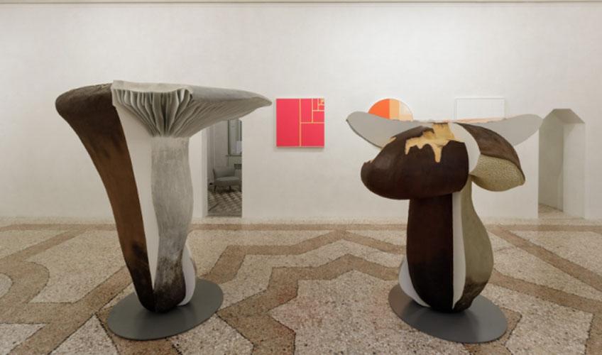 "Carsten Höller. ""Mushrooms mathematics"" en Massimo di Carlo, Milán"