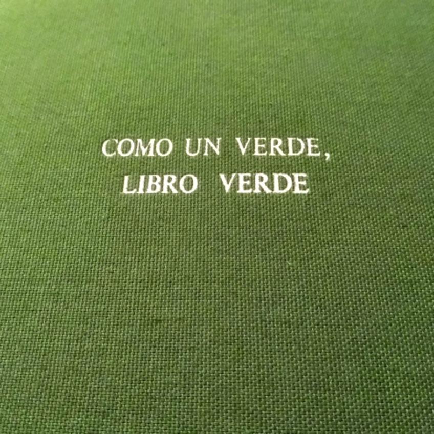 """Julia Huete. """"Como un verde, libro verde"""""""
