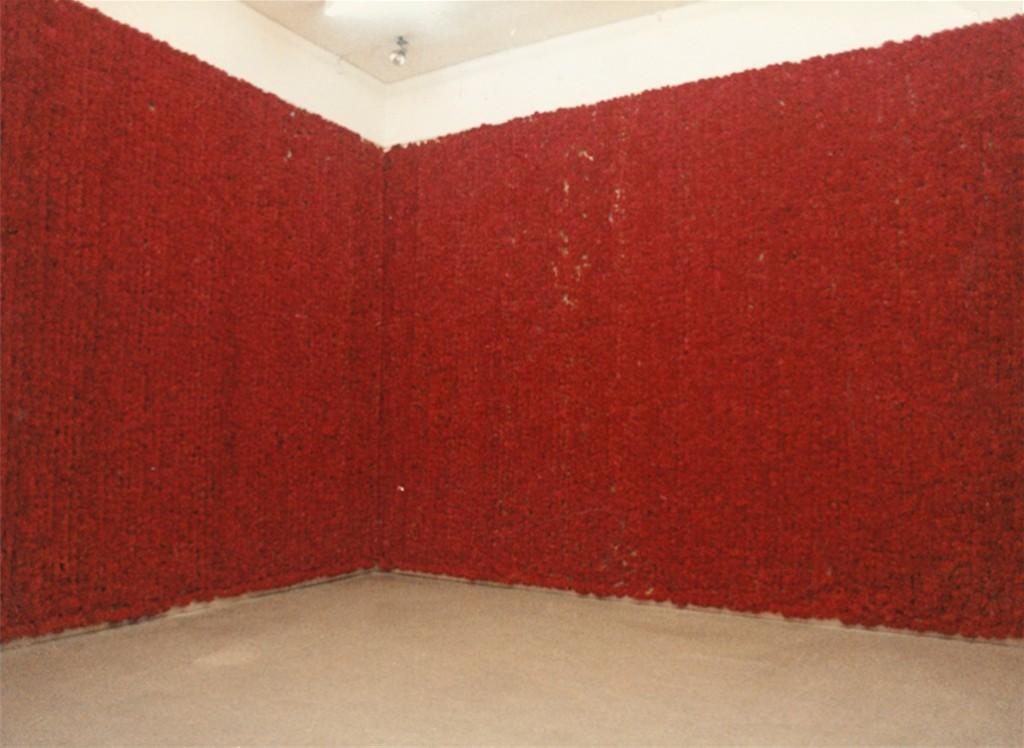 Soledad Sevilla. Leche y sangre. Instalación artística