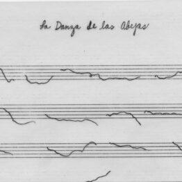 Glenda León y la música de las esferas