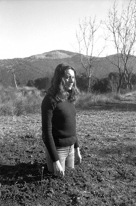 Fina Miralles. Translacions. Dona-Arbre, 1973