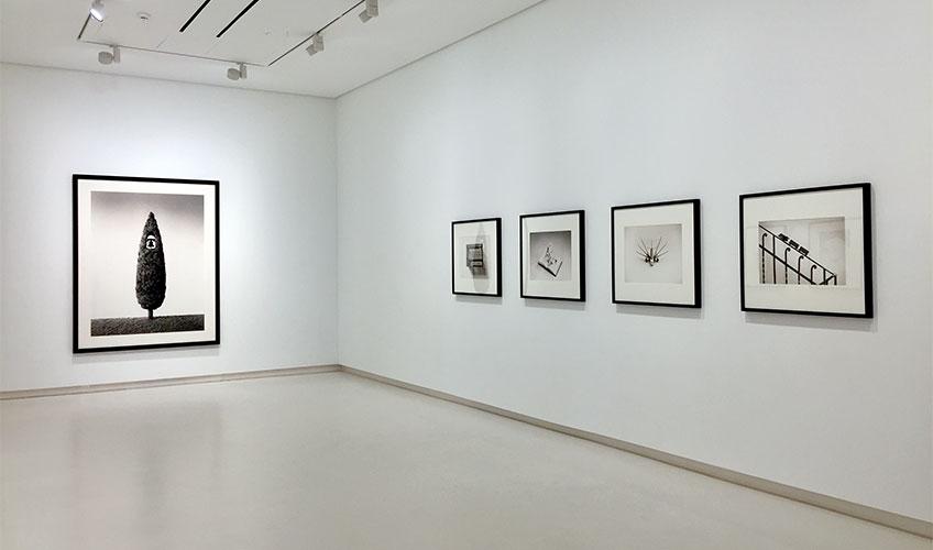 """Chema Madoz"". Galería Elvira González, 2018"