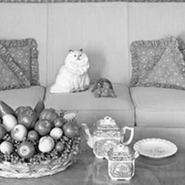 Lynne Cohen. Living Room, Racine, Wisconsin, 1971
