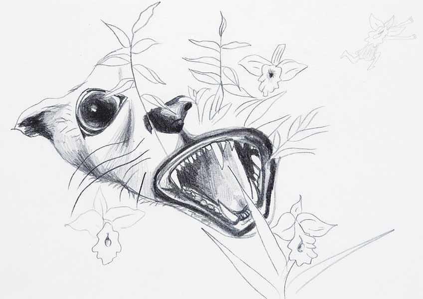 Gilda Mantilla. Sin título. Serie Dibujando B..., 2006