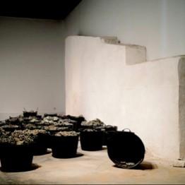 CARMEN LAFFÓN . Espuertas cargadas de uvas , 2006-2009. Colección CAAC