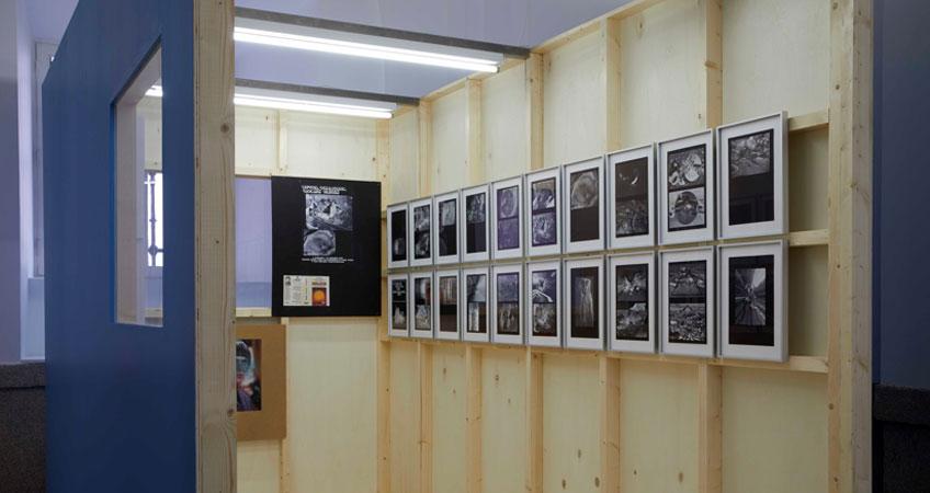"Vista de sala de la exposición ""Henrik Olesen"". Museo Reina Sofía"