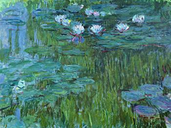 Claude Monet. Nymphéas, hacia 1916. © Claude Monet/ Musée Marmottan Monet, Paris / The Bridgeman Art Library