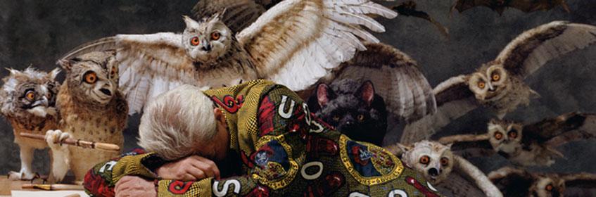 Yinka Shonibare, MBE. The Sleep of Reason Produces Monsters (America), 2008