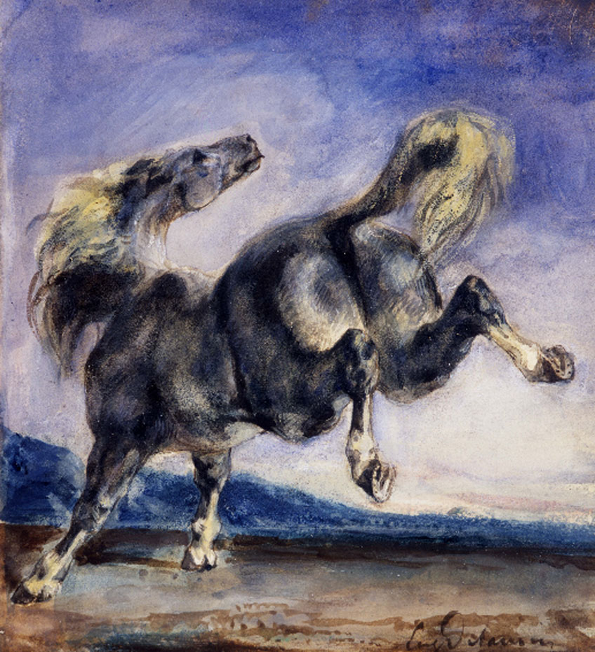Eugène Delacroix. Cheval ruant. Collection Prat