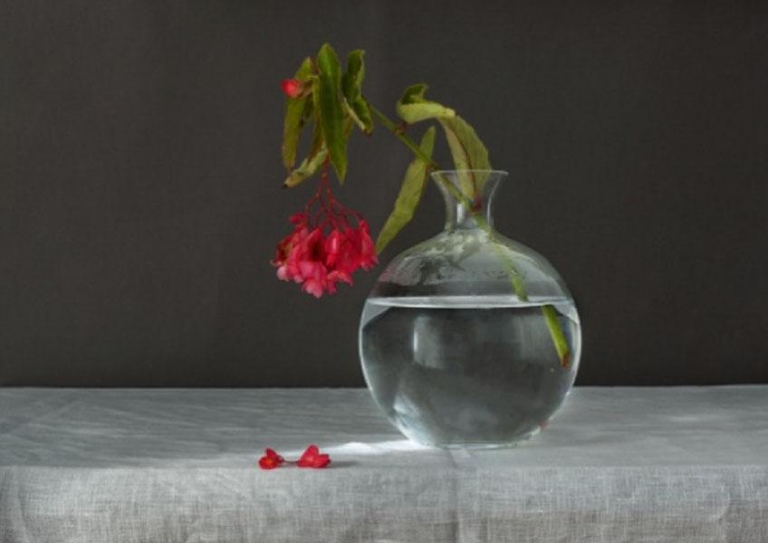 """Pilar Pequeño. """"Naturalezas muertas"""" en la Galería Marita Segovia"""