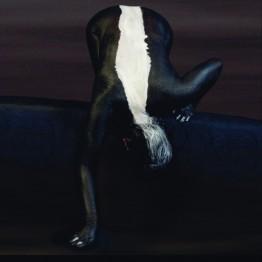 Cecilia Paredes. Zorrino curioso, 2003