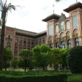 3 Ayudantes de Archivos, Bibliotecas y Museos en la Universidad de Córdoba