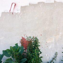Lugares fértiles. Intervenciones artísticas y ecológicas en el tercer paisaje. Taller en el Museo Carmen Thyssen de Málaga. Inscripción hasta el 10 de julio de 2018