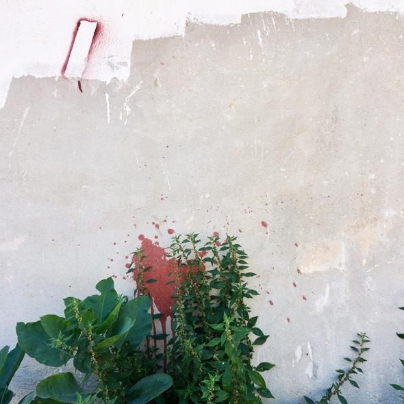 Lugares fértiles. Intervenciones artísticas y ecológicas en el tercer paisaje