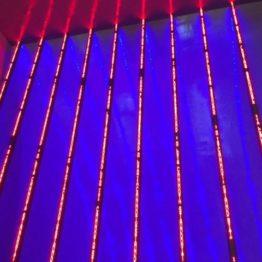La conservación de obras de arte con materiales tecnológicos. Curso de verano organizado por el Museo Guggenheim Bilbao y la Universidad del País Vasco