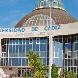 Empleo cultural: 2 Ayudantes de Archivo, Biblioteca y Museo en la Universidad de Cádiz