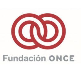 Técnico de Promoción Cultural y Animación Sociocultural en la Dirección General de la ONCE