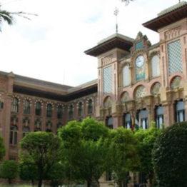 3 Técnicos Especialistas de Biblioteca, Archivos y Museos en la Universidad de Córdoba
