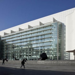 Gerente del Museo de Arte Contemporáneo de Barcelona. MACBA