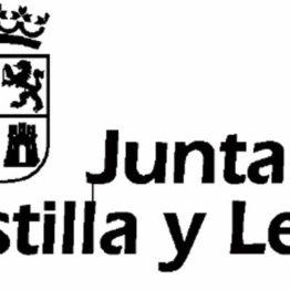 Programa de arte joven Castilla y León 2019-2020