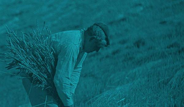 León Film Rural: Luchas rurales, desastres globales y sueños colectivos