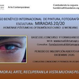 Miradas 20/20. Fundación Matilde Tamayo