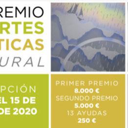XIII Premio de Artes Plásticas La Rural