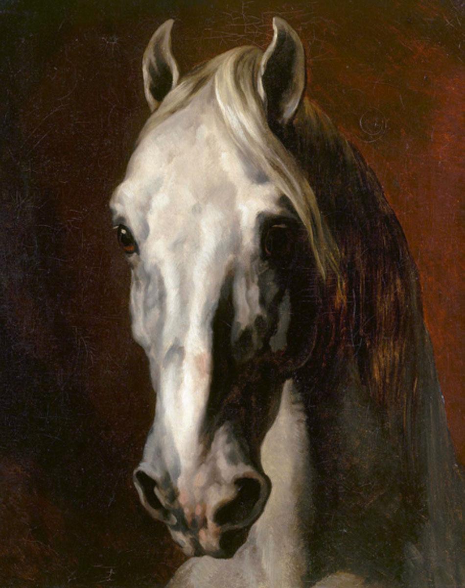 Géricault. Tête de cheval blanc, 1815. Musée du Louvre