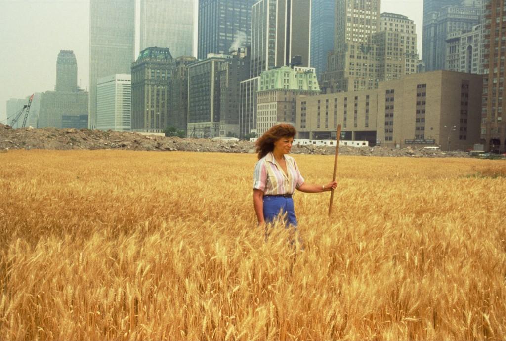 Agnes Denes. Wheatfield-A confrontation, 1982