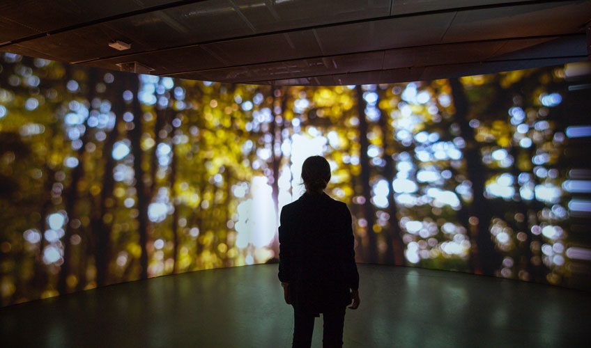 Joanie Lemercier. The Hambach Forest and the Technological Sublime